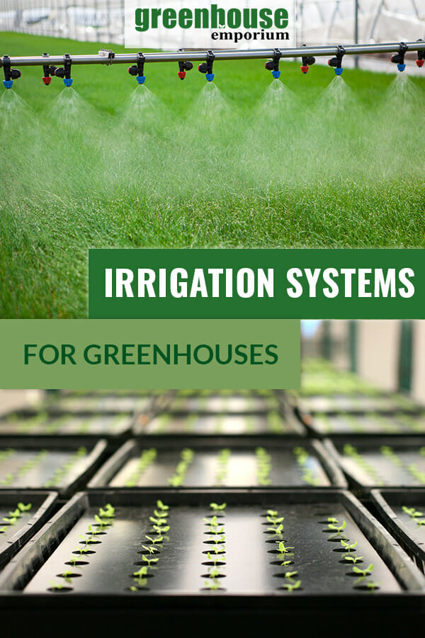 Image of over-head sprinklers in a greenhouse and self-watering trays in rows with seedlings with the text overlay: Irrigation Systems for Greenhouses