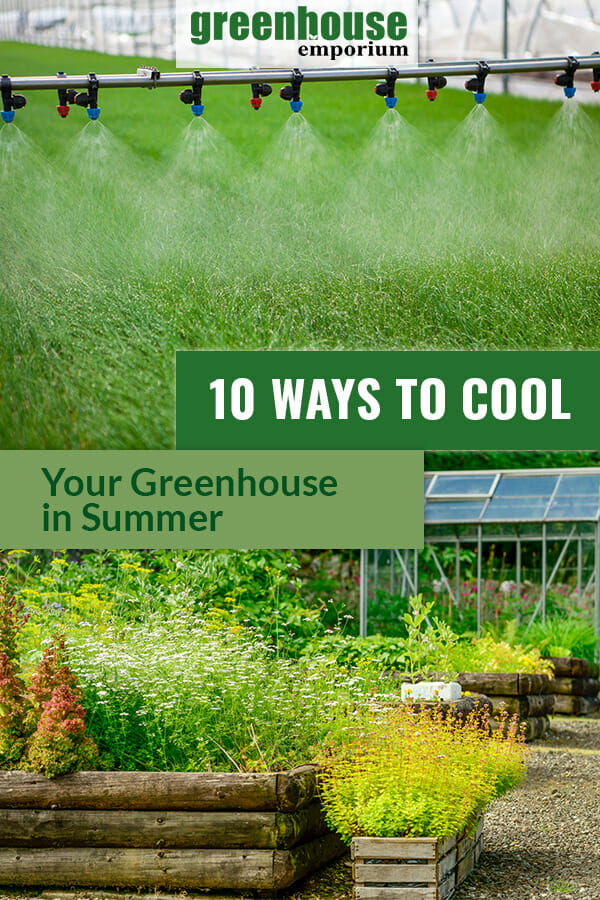 Misting system and plants with text 10 Ways to Cool Your Greenhouse in Summer