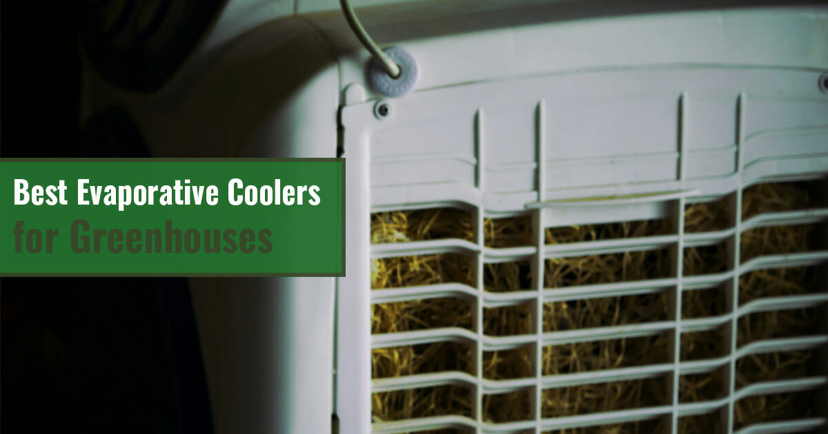 Close-up of swamp cooler and the text: Best evaporative coolers for greenhouses
